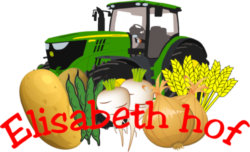 cropped-Logo_Elisabeth_hof_klein-e1546338463295.png